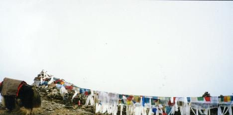 チベット 山の上 タンカ