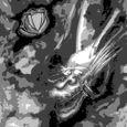 水墨画 龍竜図 Breaks Homophily Up Dragon in Sumi-e