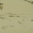 水墨画 桜 - Cherry Blossom -