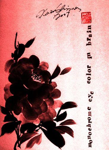 水墨画 黒紅牡丹