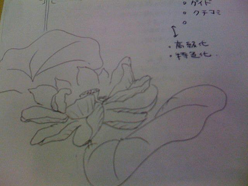 つぶし描き 蓮