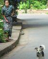 Laosdoggirl